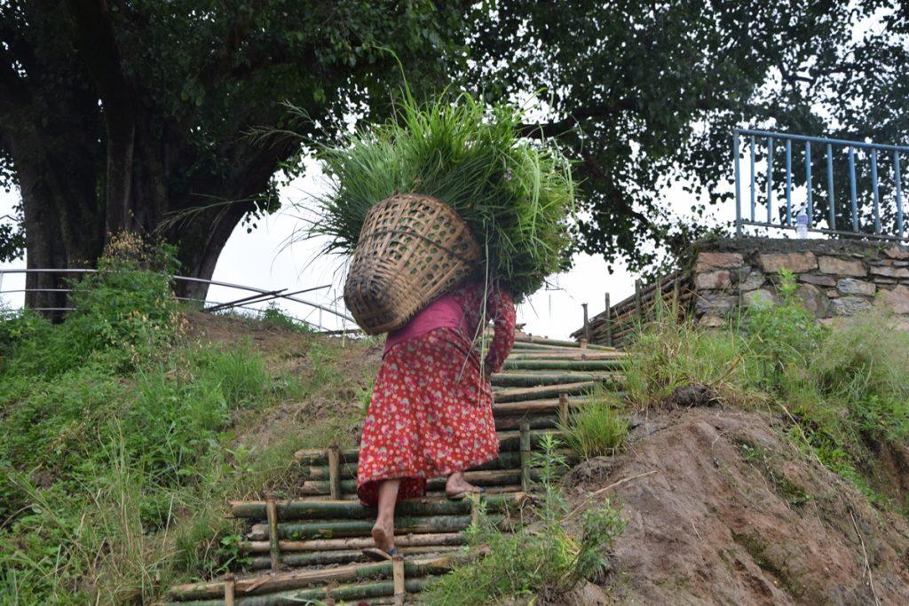 Nepal2019-Dag-18-43