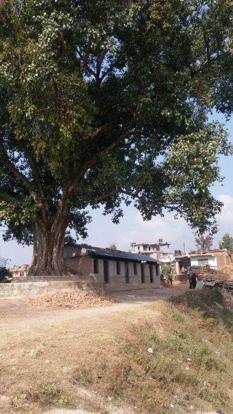 Nepal12